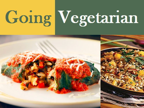 Going Vegetarian with Rice Recipes