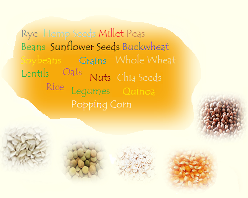 Pulses, Seeds, beans and more