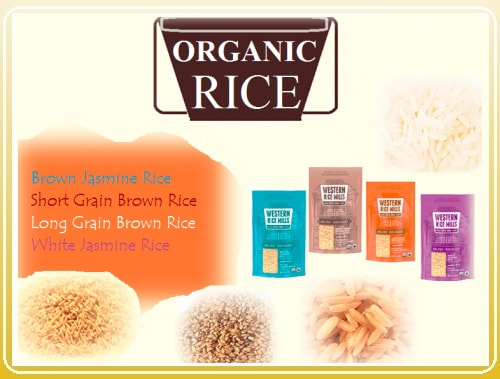 All Organic Rice Products